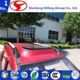 販売のための中国の電気車か手段