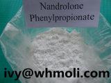 粉筋肉成長のDurabolinの未加工ステロイドのNandrolone Phenylpropionate