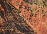 Tegels van de Vloer van het Porselein van de Oppervlakte van China de Gouden Leverancier Opgepoetste