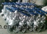 Gussteil-Stahl-Schrägflächen-gangbetriebenes Kugel-Ventil