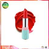 Começ os vales que hidratam o batom do cosmético das cores da forma 6 dos bordos
