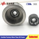 De Matrijzen van de Tekening van het Carbide van het wolfram van Zhuzhou