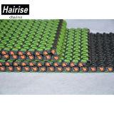 Hairise2120 verstrekt de Fabriek de Plastic Ketting direct Van uitstekende kwaliteit van de Sneeuw