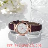 Montre-bracelet de dames de quartz de courroie en cuir de mode (Wy-17018)