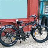 바닷가 함 고전 또는 포도 수확 또는 Pedelec Retro 250W/500W/750W 전기 26X4 뚱뚱한 타이어 Bike/E 뚱뚱한 타이어 자전거 또는 전기 눈 Bike/E 지방 Bicycle/E 모래 자전거 또는 뚱뚱한 세륨