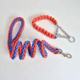 Multi-Strandナイロンスーツペットカラー犬の鎖
