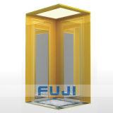 Piccolo elevatore domestico dell'elevatore di FUJI