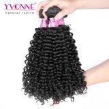 卸売価格のマレーシアの巻き毛のブラジルの人間の毛髪の拡張