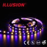 Tiras do diodo emissor de luz da garantia SMD anos impermeáveis do CE do UL RoHS dos 3