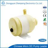 De mini 12V Pomp van het Water van gelijkstroom met Stroom 3L/Min van het Water