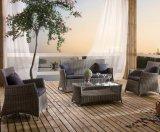 Do escritório de vime do hotel da HOME da sala de estar do pinho do jardim do pátio do Rattan sofá ao ar livre (J630)