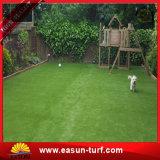 حديقة اصطناعيّة مرج عشب مرج اصطناعيّة لأنّ سجادة يرتّب عشب