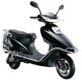 Motociclo eléctrico OEM de fábrica/scooters/Moto com 800W de potência