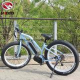 250W 26 인치 뚱뚱한 타이어 전기 산 E 자전거 디스크 브레이크 리튬 건전지 자전거