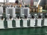 11kv 22kv 333kvOlie Ondergedompelde Transformator/Toroidal ElektroTransformator