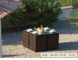 Rattan Furniture Dining Set with Outdoor Flesh