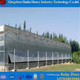 Van de Prijs van de fabriek de Serre van het PC- Blad met Hydroponic Systeem voor Bloemen