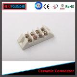 전기 격리된 고품질 세라믹 단말기