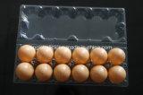 12 huevos de las células borran las bandejas plásticas del huevo del pollo del animal doméstico