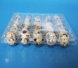 Las unidades 5*6 30 borran las bandejas plásticas del huevo de codornices del animal doméstico