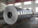 201 202 304 316 316L 310 321ultra multam o metal ultra fino de aço inoxidável do fio fio elétrico