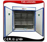 Ce d'élevage incubateur d'oeufs de poulet automatique Machine d'écloserie de la Tanzanie