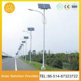 中国の工場15A/12V 50W太陽庭の街灯