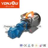 휴대용 기어 기름 전기 펌프 (WCB)