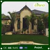 安く総合的な芝生のバルコニーの景色の草を美化すること