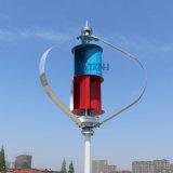 100W verticale Turbine van de Wind van de As 1.3m Opstarten 12V 24V met de Verpakking van de Generator Maglev met de Regelgever van de Schakelaar van MPPT 12V 24vauto