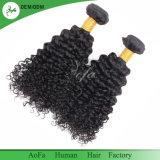 加工されていない人間の毛髪の拡張ねじれた巻き毛の卸し売りバージンのブラジル人の毛