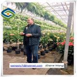 최신 Slae를 위한 토마토를 위한 농업 PC 장 정원 온실