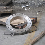 Flange cega de aço de Casted SAE1045