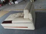 China-modernes Sofa, ledernes Sofa im Wohnzimmer (A012)