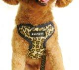 Chicote de fios flexível colorido do filhote de cachorro do cão de animal de estimação (hns4002)