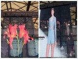 P6mm Shop Window Publicité Décoration LED Video Display