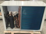 ヒートポンプの熱湯ヒーターのプールのサーモスタットの給湯装置のホテルの熱湯装置に水をまく大きい空気