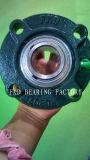 Fkd/Fe/Hhb Kissen-Block-Peilung-/Bearing-Geräten-/Flange-Kassetten-Geräte (UCFC206)