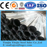 Tubo de acero inoxidable competitivo de China (304 321 316L 309S 310S)