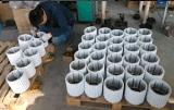 AC 1kw de Permanente Alternator In drie stadia Pmg van de Generator van de Magneet