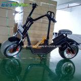 Ecorider elektrischer Harley schwanzloser Motor des Roller-1200W für Verkauf