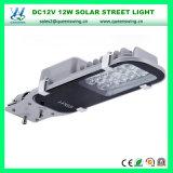 Indicatore luminoso di via solare esterno di alto potere 12W 24W 30W 40W 50W LED di CC 12V IP65