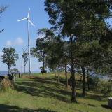 Agriculture를 위한 능률적인 Wind Power Generator System 3000W