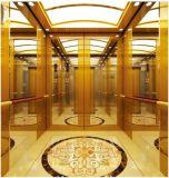 Vvvf profissional alemão conduz para casa o elevador da casa de campo (RLS-223)