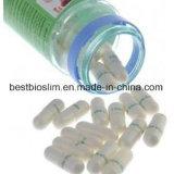 7 Дней Травяные таблетки похудение Lida белого потеря веса капсулы