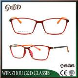 Het populaire Optische Frame T6005 van het Oogglas van Eyewear van de Glazen van het Ontwerp Nieuwe Tr90