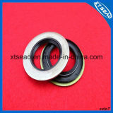 Rubber Parts를 위한 고무 Oil Seal
