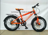 Велосипед 2017 горячий сбываний/велосипед детей/Bike малышей 20 дюймов с тарельчатым тормозом Sr-Kb139