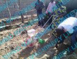 単一の列および二重列押しのトウモロコシの種取り機
