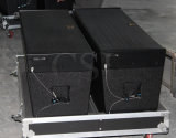 "12 ""Line Array Speaker PRO Système audio"